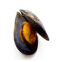 produits-moules-baie-d-isignie